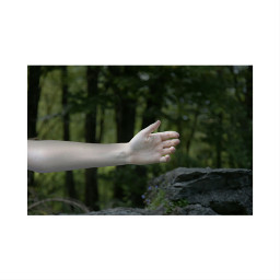 nature photography arm hand bff