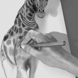 drawing mydrawing digitaldrawing digitalpainting blackandwhite dcwildlife