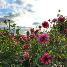 pameeting5 britzergarten berlin my_berlin myberlin