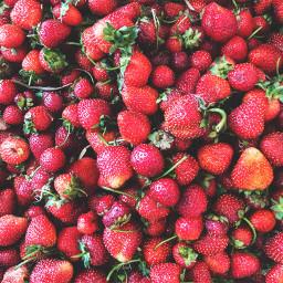 strawberries travel summer freetoedit