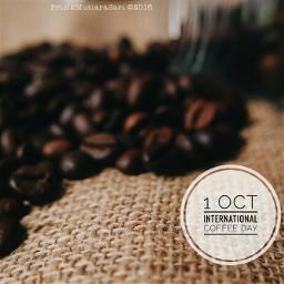 coffeeday internationalcoffeeday photography coffeebean coffeephotography
