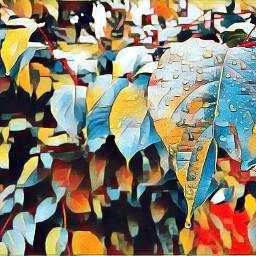 fall pnw interesting art nature freetoedit