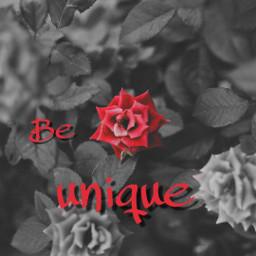 freetoedit reedited beunique