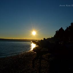 sunset beach goldenhourlight thesun summer2015