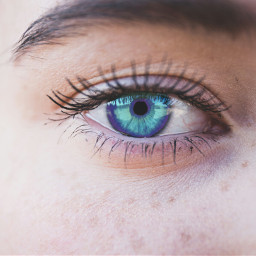 freetoedit blueeyes purpleeyes