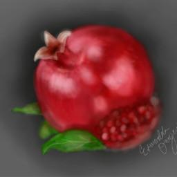art fruit pomegranate nature red wdptwotone