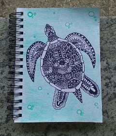 turtle mandala drawing mydrawing animal