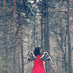 freetoedit remixed remixmefaves angel pics