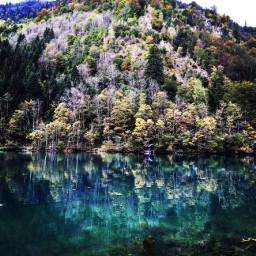 dpclandscape autumn landscape nature wow freetoedit