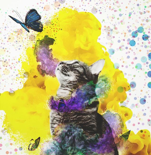 #FreeToEdit #remix #colorsplash #colorful