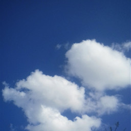 photography nikonphotography blue_sky fluffyclouds